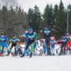 Lemming Loppet - Skimarathon im Nordschwarzwald