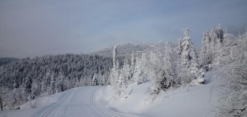 Bodenmais/Bretterschachten
